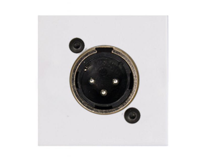 Procab Connection plate XLR male 45 x 45 mm White version