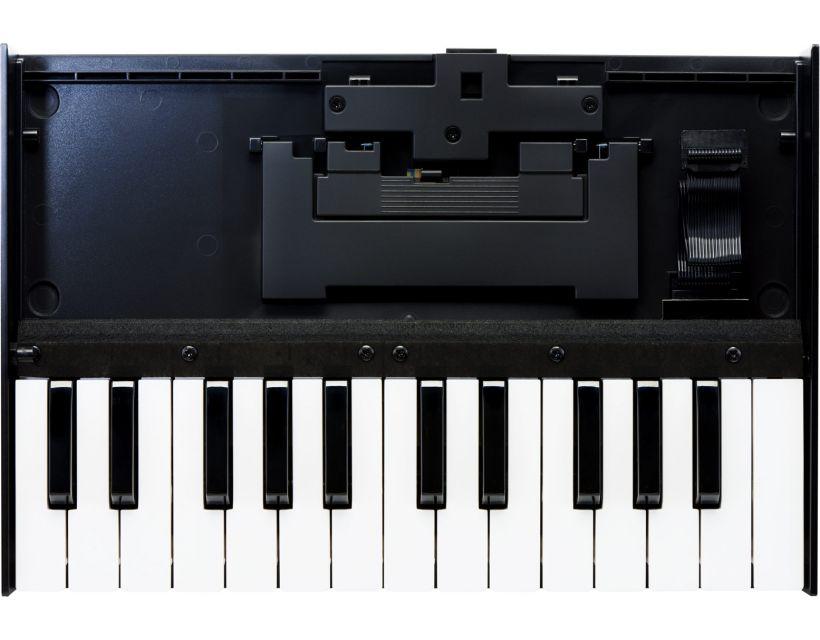 Roland Boutique K-25m